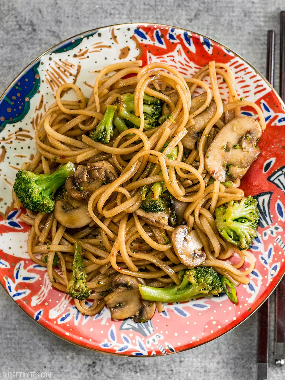 With just a few ingredients you can make these easy and delicious Mushroom Broccoli Stir Fry Noodles for a fast weeknight dinner. BudgetBytes.com