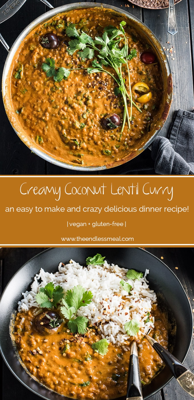 This easy to make Creamy Coconut Lentil Curry takes less than an hour to make (mostly hands off time) and is packed full of delicious Indian flavors. It's a healthy vegan recipe that makes a perfect meatless Monday dinner recipe. Make extras and you'll have a giant smile on your face at lunch the next day. | #theendlessmeal #coconutcurry #lentils #lentilcurry #vegan #glutenfree #curry